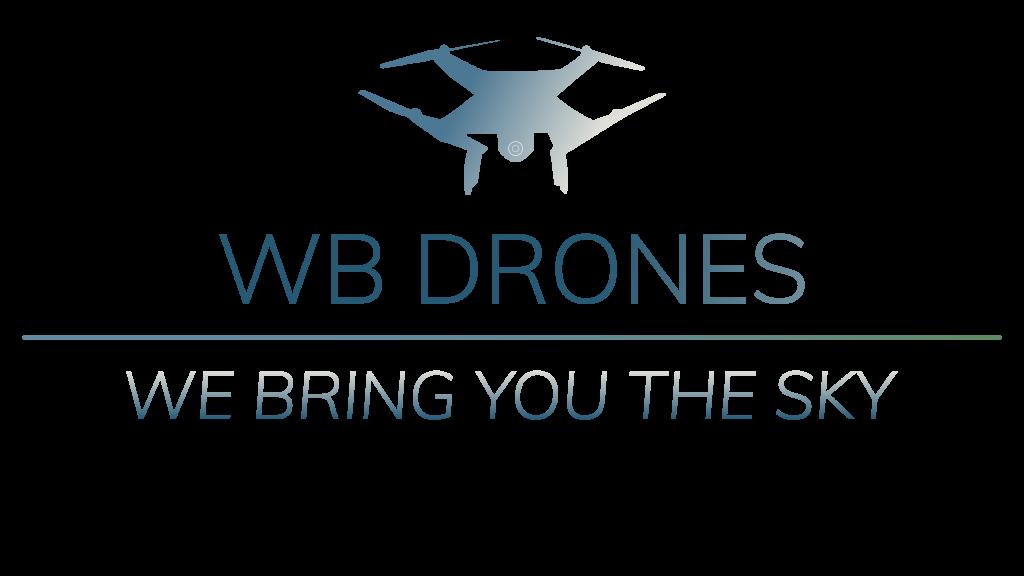 Logo WB Drones